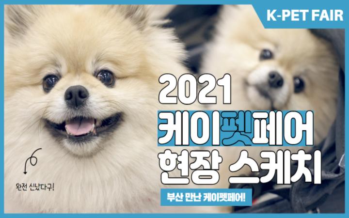 부산 댕댕이들 모여라~ 일년만에 돌아온 '2021 케이펫페어 부산'
