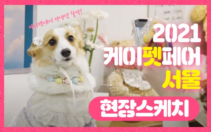 댕댕이들의 봄맞이 나들이 '2021 케이펫페어 서울'
