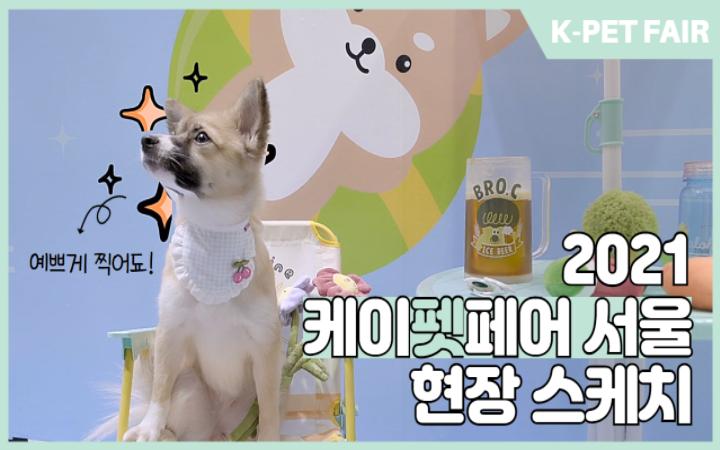 슬기로운 여름나기 '2021 케이펫페어 서울'